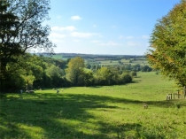 Picture of Cotswolds