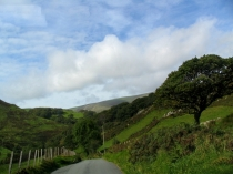 Picture of Country Lane in West Wales
