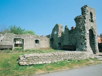 Picture of Barry Castle