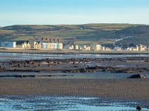 Picture of Borth Submerged Forest
