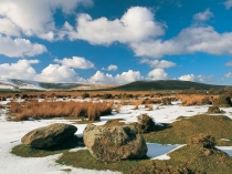 Picture of Preseli Hills