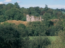 Picture of Newcastle Emlyn Castle