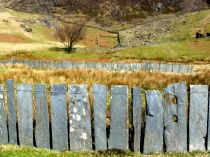 Picture of Welsh Slate Fencing