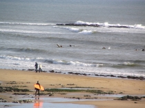 Picture of Surfer at Langland Bay