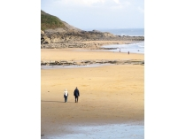 Picture of Walkers on Langland Bay Beach