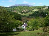 Picture of Dolmurgoch Holiday Cottage