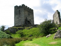 Picture of Dolwyddelan Castle and Curtain Walls