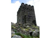 Picture of Dolwyddelan Castle Keep