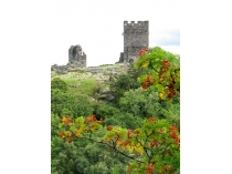 Picture of Autumn View of Dolwyddelan Castle