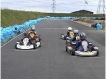 Picture of Carew Karting