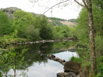 Picture of Lledr River Pool