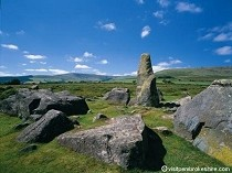 Picture of Preseli Bluestones