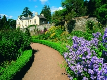 Picture of Walled Gardens at Aberglasney Gardens