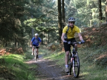 Picture of Brechfa Forest Mountain Bike Trails