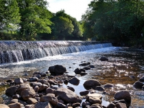 Picture of Weir on the River Amman