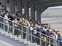 Picture of Grandstand at Ffos Las Racecourse