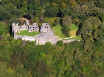 Picture of Dinefwr Castle