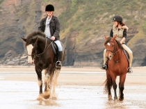 Picture of Horse Riding on Marros Sands South Wales