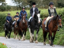 Picture of Horse Riding South Wales