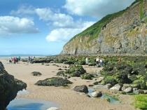 Picture of Pendine Beach
