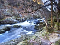 Picture of River at Rhandirmwyn