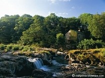 Picture of Cenarth Mill