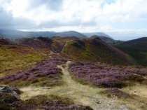 Picture of September on Conwy Mountain