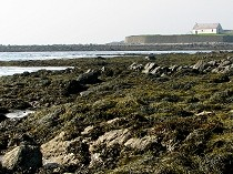 Picture of Porth Cwyfan