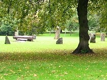 Picture of Bute Park Gorsedd Stone Circle
