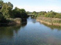 Picture of Afon  Rhythallt River