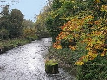 Picture of River Alyn at Rossett