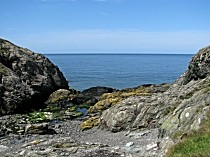 Picture of Porth Newydd Gully