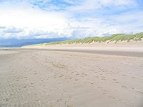 Picture of Harlech Sand Dunes