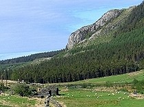 Picture of Carreg Alltrem
