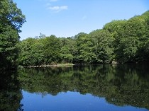 Picture of Beaver Pool