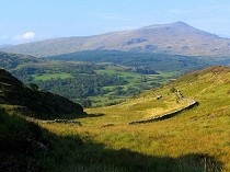 Picture of Moel Dyrnogydd Viewpoint