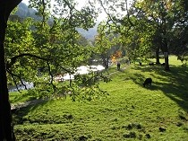 Picture of Betws-y-Coed Riverside Walk Viewpoint