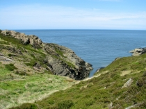 Picture of Sea Views from the Anglesey Coastal Path