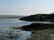Picture of A Rocky Headland