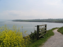Picture of Anglesey Coastal Path at Moelfre