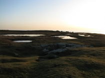 Picture of Landscape at Rhoscolyn Head