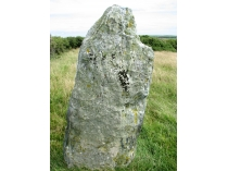 Picture of Llanfechell Standing Stone
